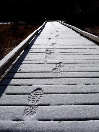 First Snow, First Footprints