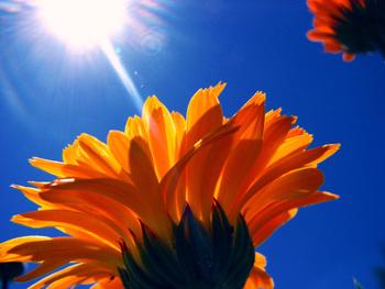 Touching the Sun