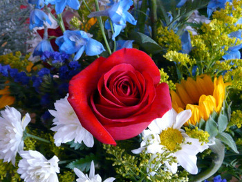Mary sent get-well flowers