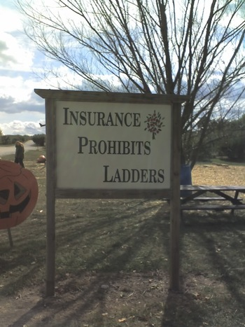 insurance prohibits ladders