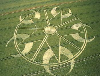 Crop circles 31