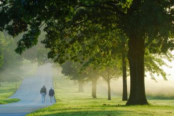 Walking on a foggy morning at sunrise