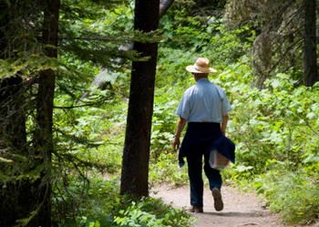 Man out for a walk in the woods