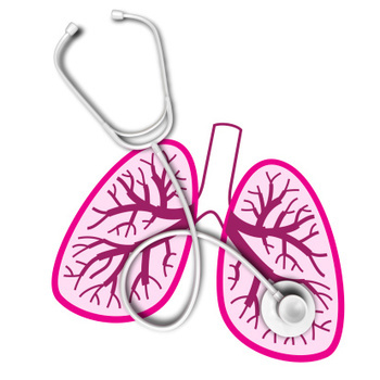 Lungs and stethoscope